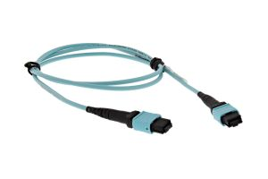 Dell Optical Fibre Patch MPT12-MPT12 1M Cable - W4R30
