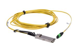Dell QSFP+ to MPO PSM45 Cable 5M 794RX